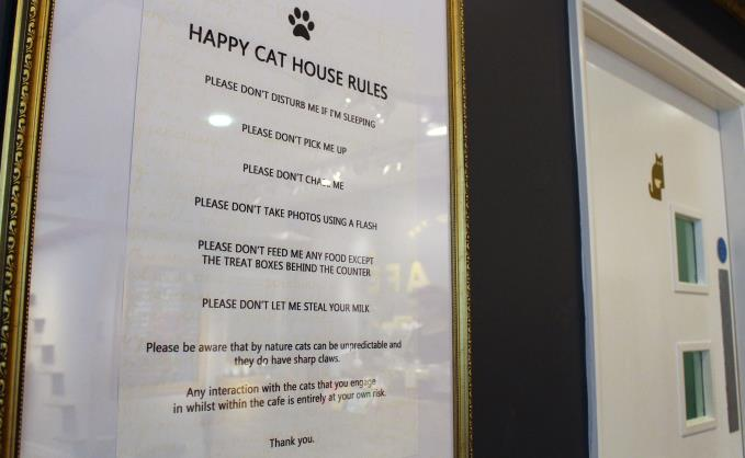 Welfare measures include a list of house rules. Children under 10 are only allowed during special events