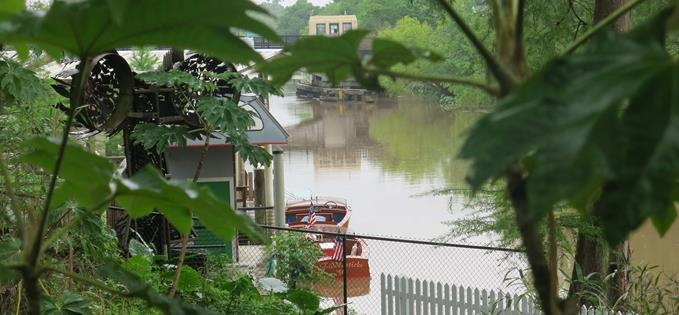 Quiet backwaters of the Bayou Teche