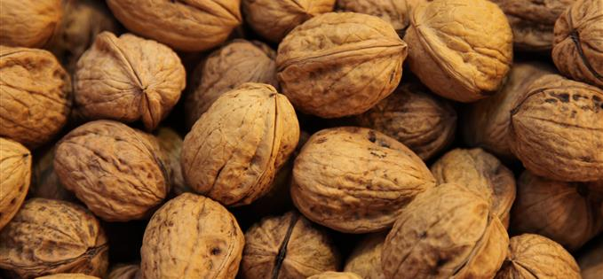 Walnuts contain omega 3 - good for brain health