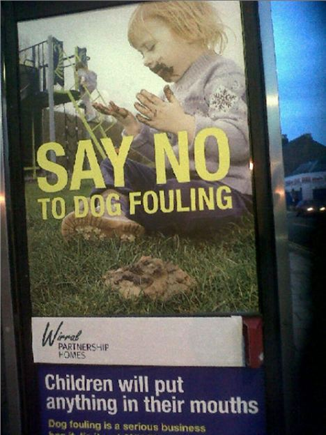 Dog Poster Wirral