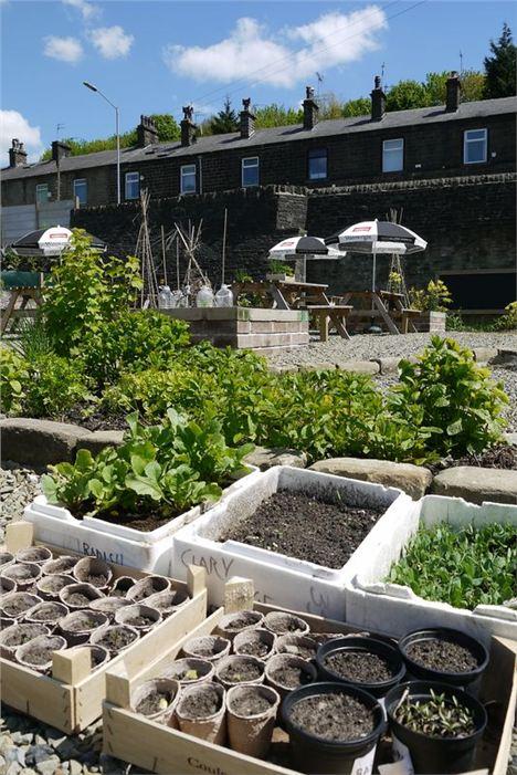 Garden-And-Pots