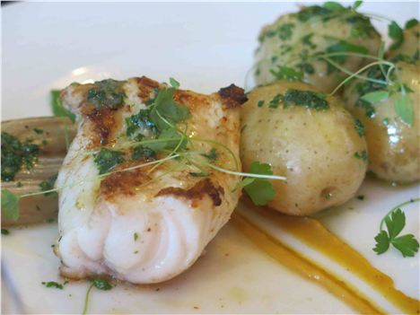 Roast Monkfish