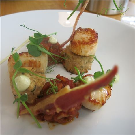 Scallops With Roast Chicken Confit Ballotine