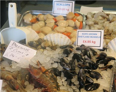 Shellfish Counter